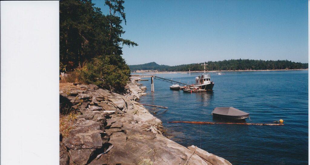 Dock @ Island in Stuart Channel