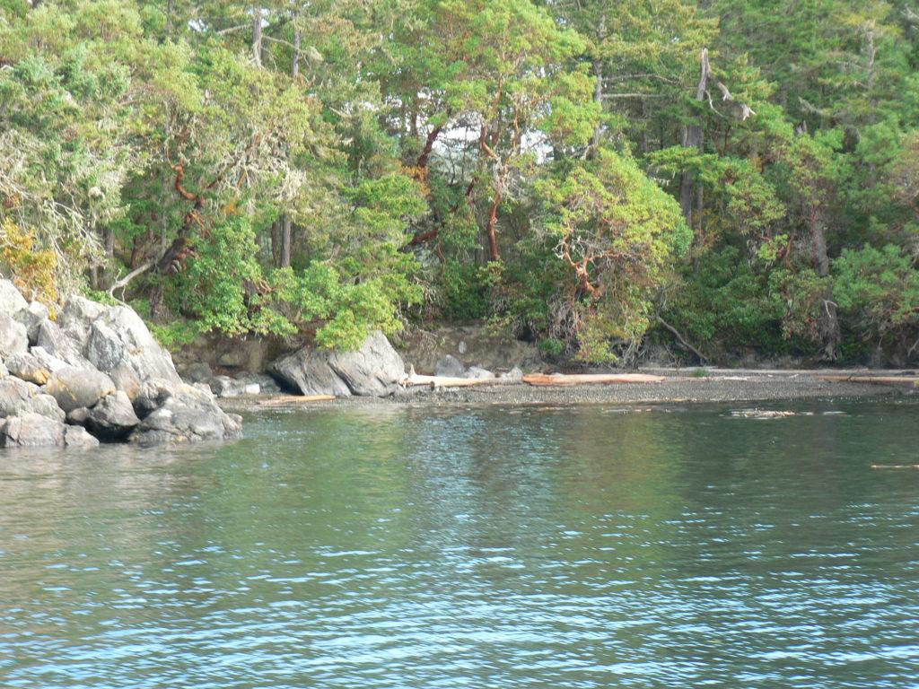 Beach Wolf Island, Becher Bay