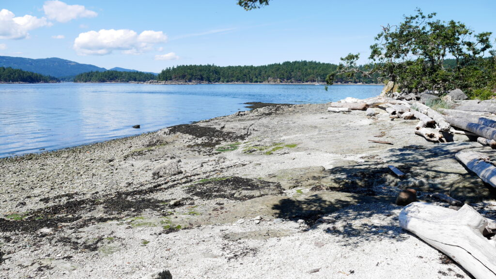 Beach NE Corner Little Shell Island~PeterNash.ca