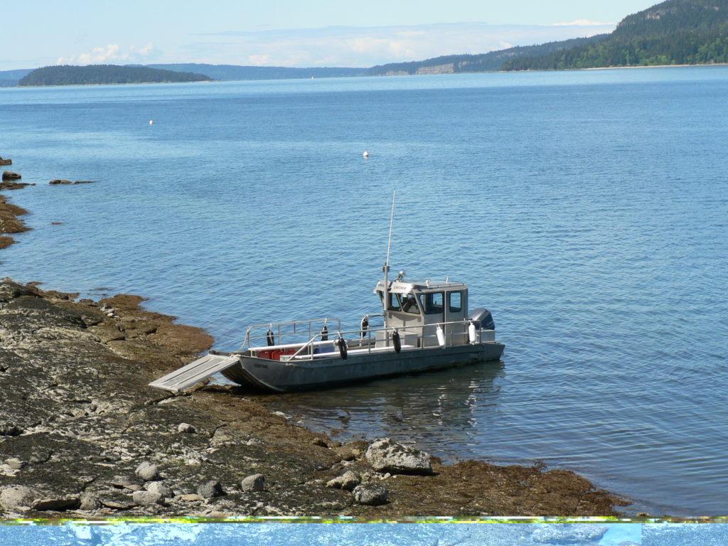 Landing On Reid Island
