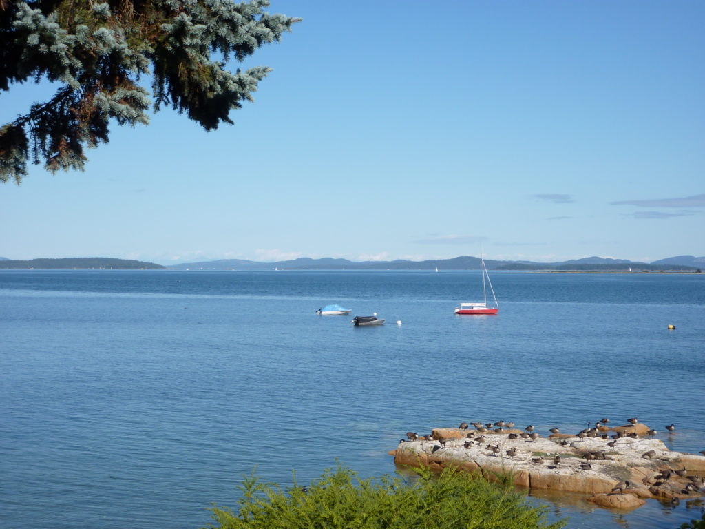 Tranquil Easterly View From Ferguson Cove, Central Saanich