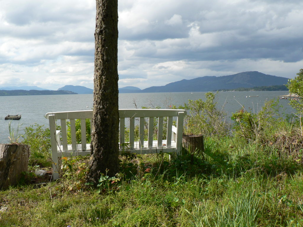 Peaceful Saanich Inlet View