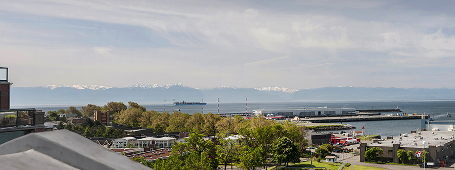 Shoal Point Pano with Distant Olympic Mtns.