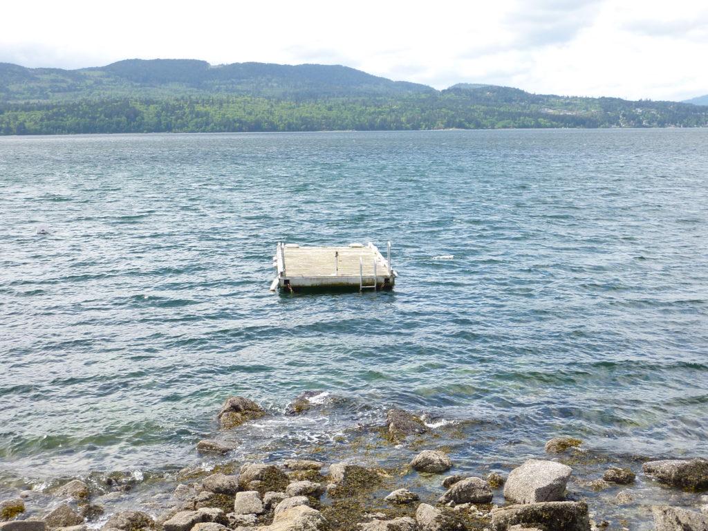 Ardmore Dr. Swim Raft