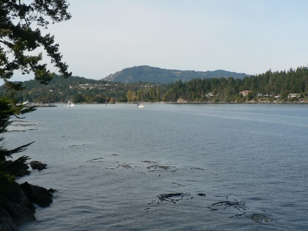 Approaching Tsehum Harbour, North Saanich