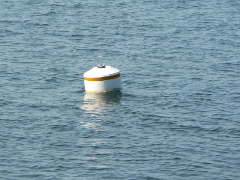 Mooring Buoy Saanich Inlet-Pat bay