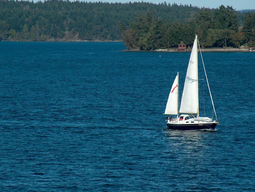 Sailing Through Colburne Passage