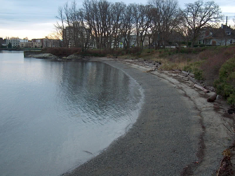 Beach In Oak Bay Looking South
