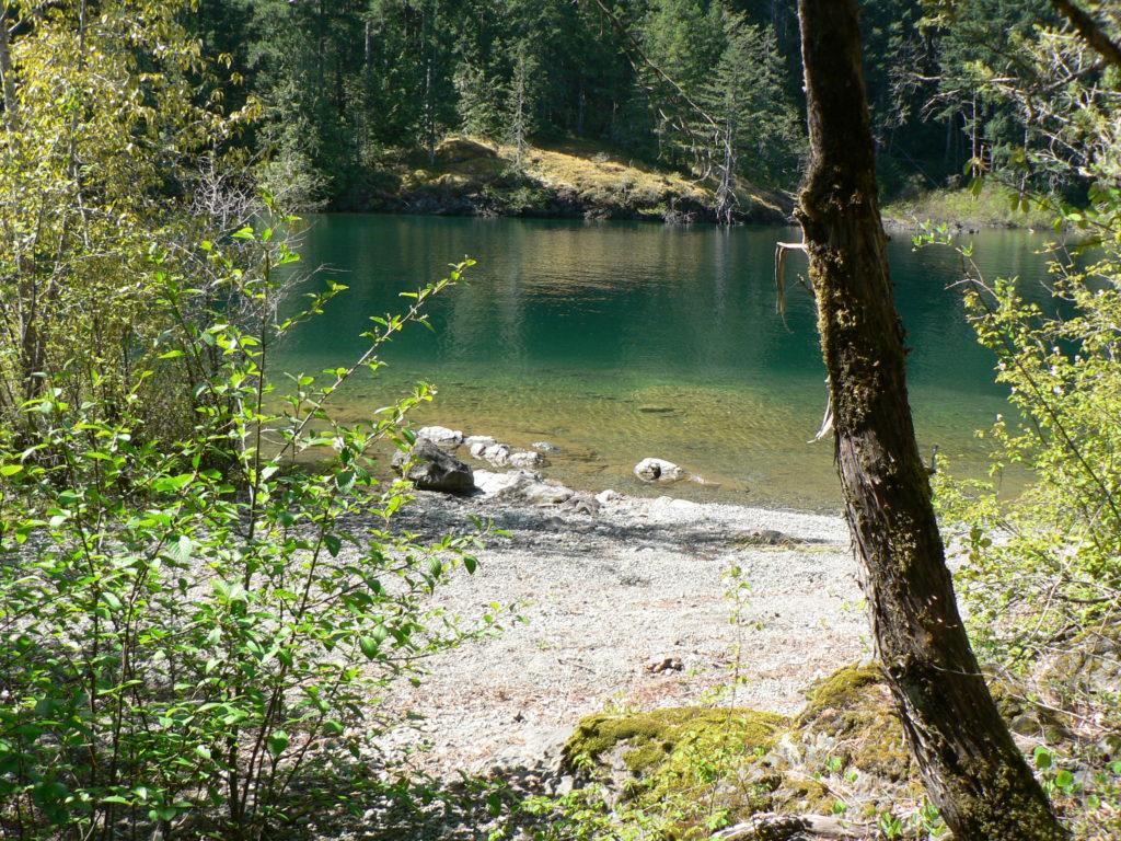 Bee Isand Cowichan Lake