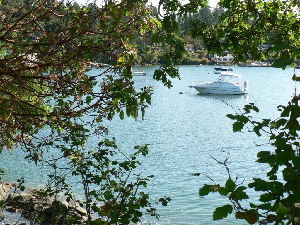 S E View Deep Cove