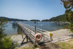 Jetty Leading to Dock & Boatshed