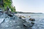Tide In-Looking North Cordova Bay