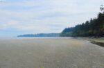 Low Tide Sand Bar Cordova Bay
