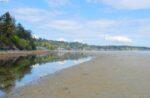 Walkable Sand Bar~Cordova Bay