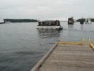 Shuttle @ Dolphin Rd Dock Swartz Bay